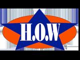 image of HO Wolding logo